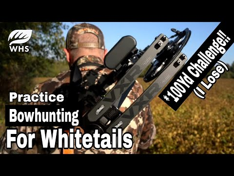 Bowhunting Practice Strategies For Whitetails