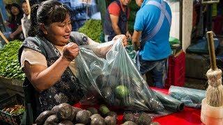 Nông dân trồng bơ Mexico tự tin, không lo việc Mỹ tăng thuế quan
