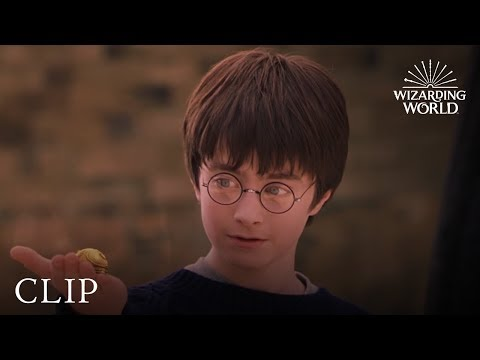 A Lesson In Quidditch  Harry Potter and the Philosopher's Stone