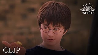 A Lesson In Quidditch | Harry Potter and the Philosopher's Stone
