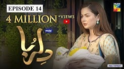 Dil Ruba | Episode 14 | Digitally Presented by Master Paints | HUM TV | Drama | 27 June 2020