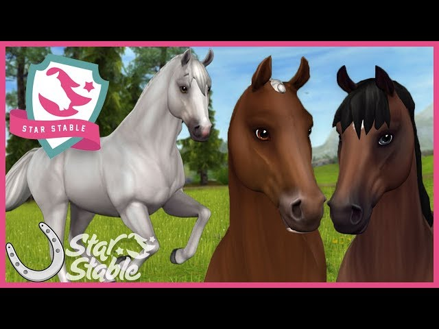 Star Stable Online Updates The Starter Horse Again