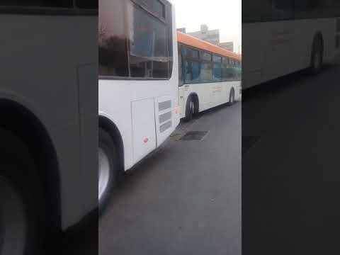 kuwait city kgl bus stand