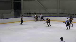 Огненные львы - Спорт-Dепо-2 | 11.01.20