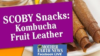 SCOBY Snacks: Kombucha Fruit Leather