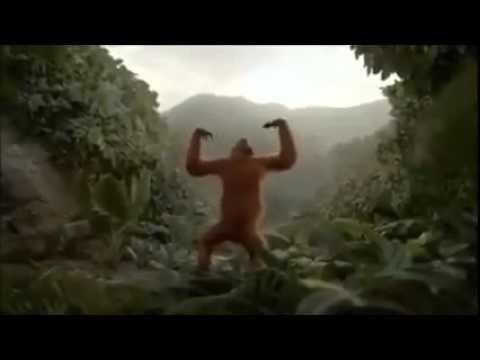 Hoch die Hände Wochenende Affen Tanz