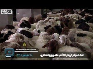 مصر العربية | الهلال الأحمر التركي يقدم 140 أضحية لفلسطينيين بالضفة الغربية