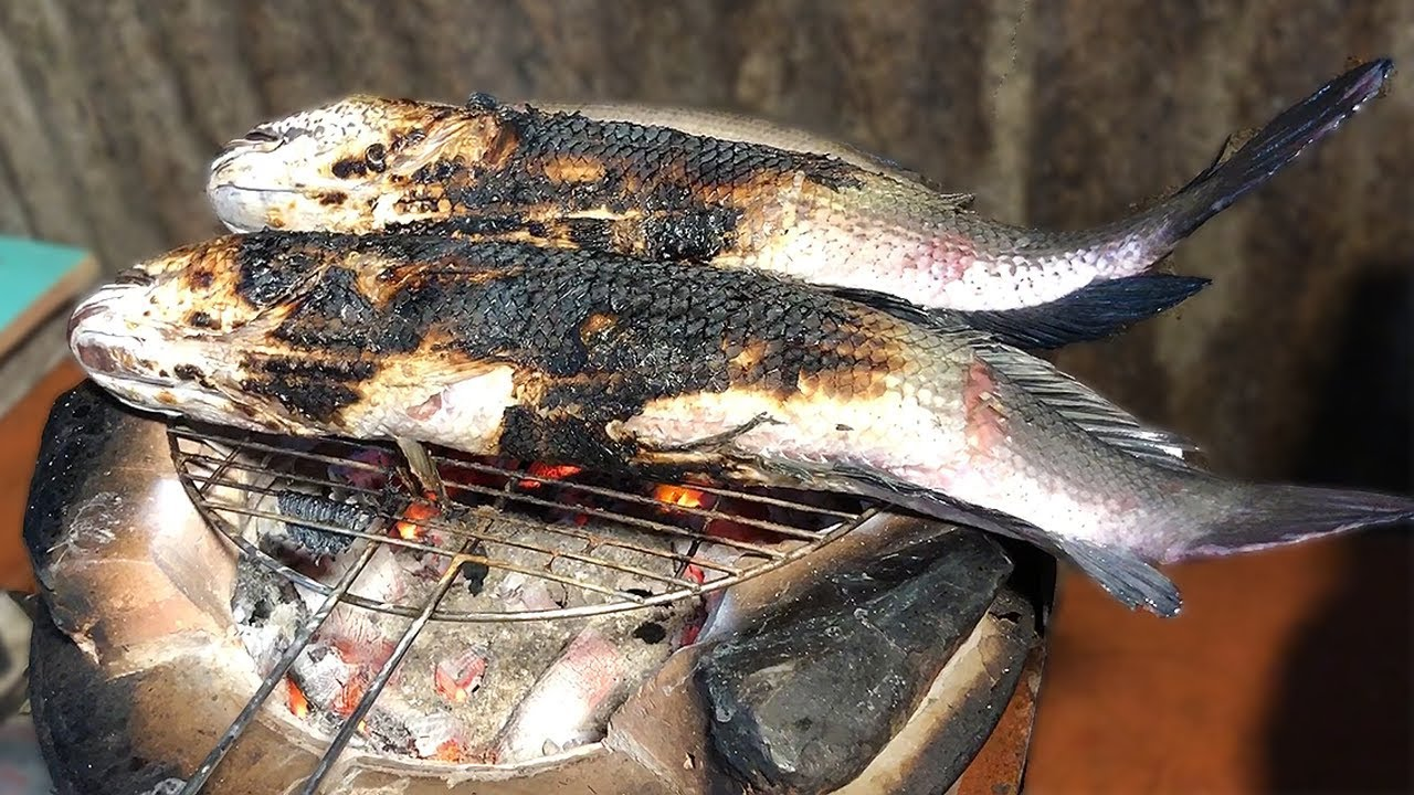 Snakehead Fish Traditional Home Cooked Meal In Vietnam