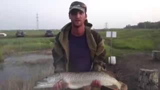 Рыбалка на карьере Бакал