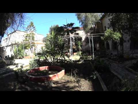 Greek Orthodox Patriarchate of Jerusalem - a rare glimpse into the hidden garden in the Patriarchate
