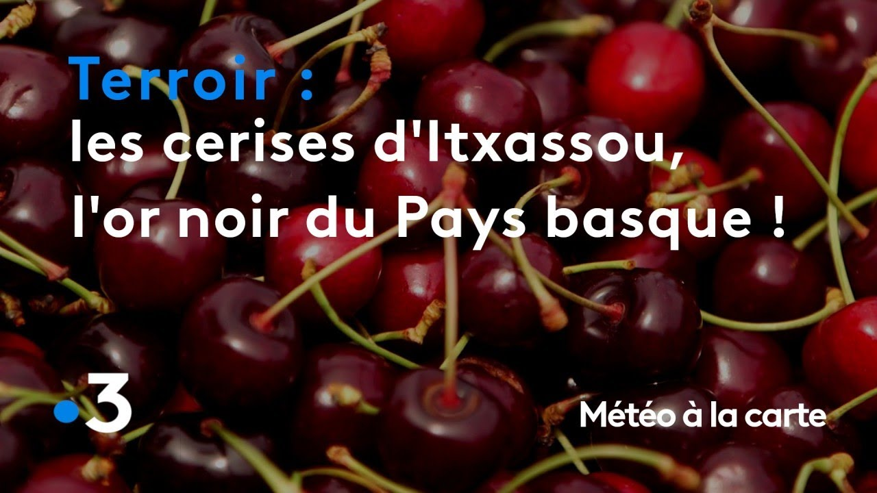 Reportages - Terroirs - Pays d'Aquitaine