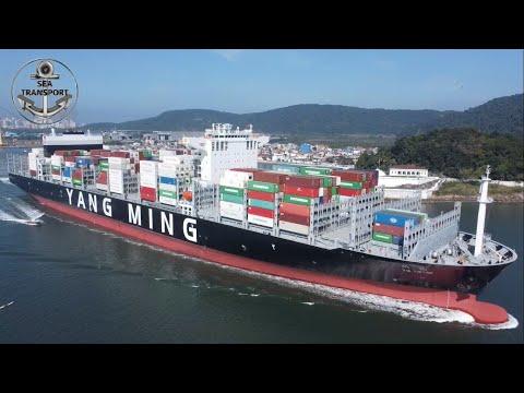 FULLY LOADED BULKCARRIER & HUGE CONTAINER SHIPS, SANTOS PORT