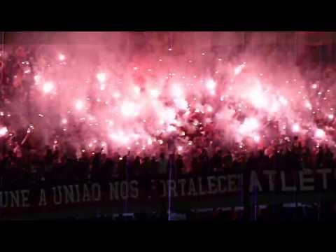 Brazilian Soccer Fans, Curitiba, Brazil