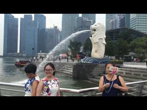 Daily Life - Visit Singapore: Merlion Park, Marina Bay, Garden by the Bay