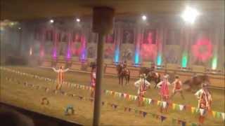 В Новороссийске 30.08.2015 девушки погибла во время конного выступления
