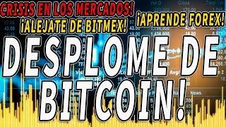 iPANICO DE OSOS! BITCOIN y CRISIS general... No + BITMEX? Aprende FOREX con METATRADER!