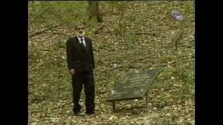 ТРАГОМ КАРАЂОРЂА : Најамник од малих ногу - 1. епизода