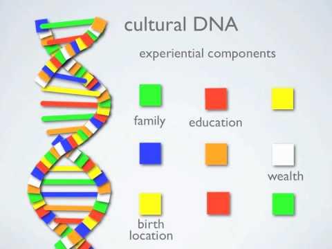 DiversityDNA: your unique cultural DNA profile