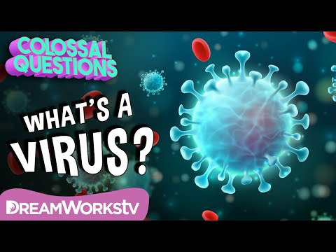 How Do Viruses Work?   COLOSSAL QUESTIONS