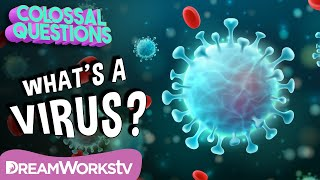 How Do Viruses Work? | COLOSSAL QUESTIONS
