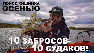 10 ЗАБРОСОВ -10 СУДАКОВ! Поиск ЩУКИ и СУДАКА осенью. РЫБАЛКА МЕЧТЫ! Джиг-Спиннинг.