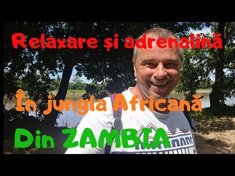 M-am plimbat singur pe jos prin Jungla Africană din Zambia