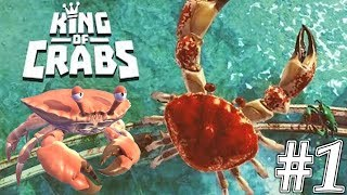 King of Crabs Android Gameplay #1 - Fight With Giant Crabs