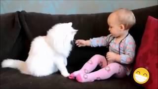 Gatti e bambini - Video divertenti e simpatici - Laughs Goods