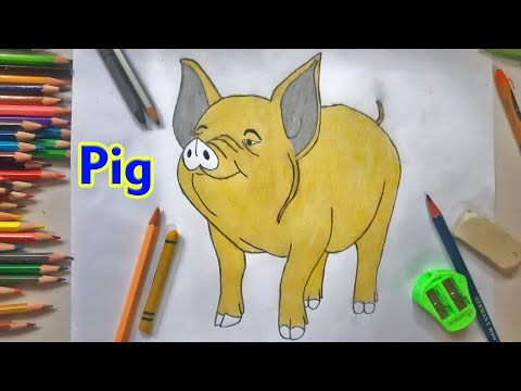 pig-drawing-and-coloring-easy-step-by-step-|-pencil-drawing-and-coloring-tutorial