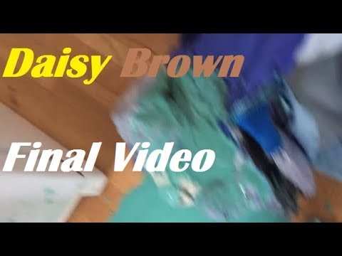 Final Video Daisy Brown Discussion Youtube She tells stories through vlogs that she posts on youtube. final video daisy brown discussion