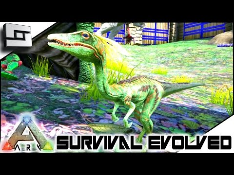 ARK: Survival Evolved - COMPSOGNATHUS (COMPY) TAMING! S2E77 ( Gameplay )