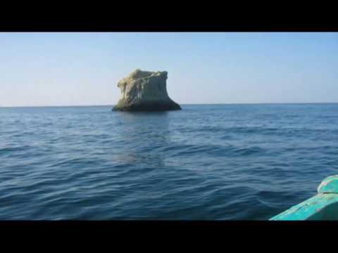 Astola Island declared Pakistan's first marine protected area