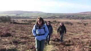 Swansea Ramblers on a Cefn Bryn Circular Walk on The Gower Peninsula