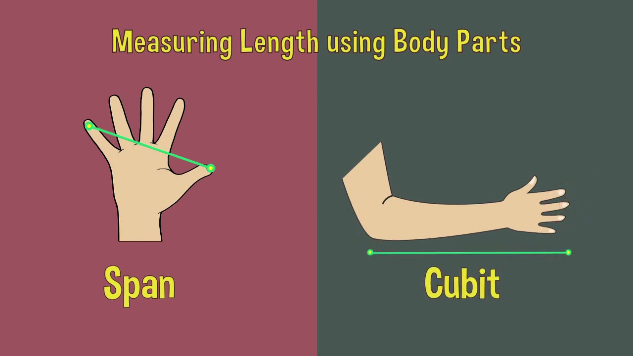 Download How to measure Length using Body Parts |Non-standard units of measuring Length