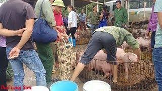 LẦN ĐẦU TIÊN KHÁM PHÁ CHỢ PHIÊN VĂN QUAN LẠNG SƠN PHẦN 2 I Thai Lạng Sơn