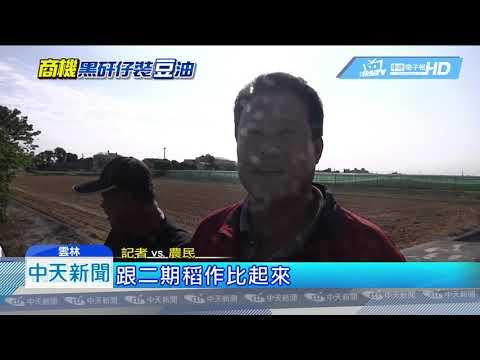 20190112中天新聞 跟韓風拚經濟! 稻農轉型種黃豆 收益增兩倍