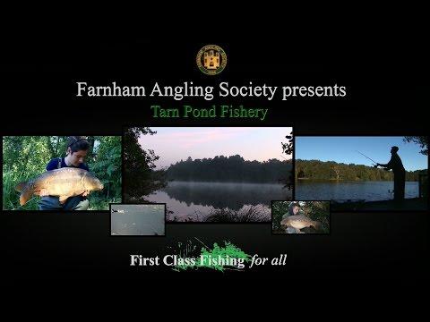 Farnham Angling Society Tarn Pond fishery