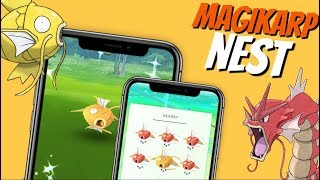 Download Video/Audio Search for best shiny nests in Pokemon Go