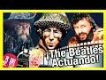 The Beatles 連続再生 youtube