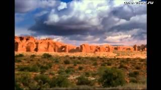 Земляне/Earthlings (трейлер HD)