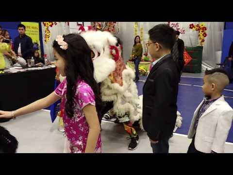 Vietnamese Tet Festival Austin 2018 * year of the dog *
