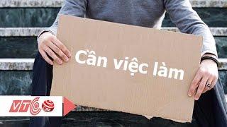 Cử nhân, thạc sĩ vẫn thất nghiệp | VTC