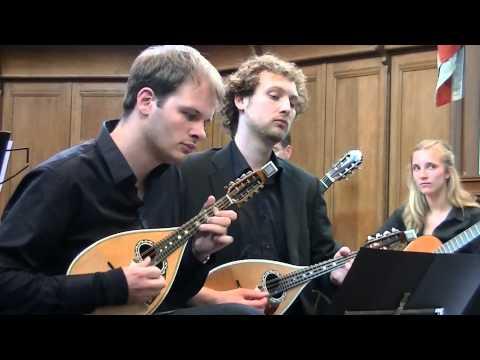 Antonio Vivaldi - Concerto for 2 Mandolins and Orchestra (RV532) by Het CONSORT