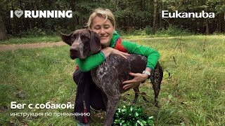 Бег с собакой: инструкция по применению. Лекторий от Eukanuba при поддержке I Love Running
