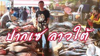 เที่ยวลาว☆๒๐๑๙ EP# 21 ตลาดปลาที่ไหญ่ที่สุดใน #นครปากเซ #ลาวใต้