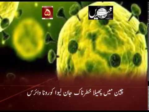 چین میں پھیلا خطرناک جان لیو ا کورونا وائرس