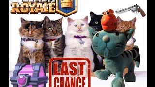 Clash Royale Fischi und Katzi machen eine Riesen Magiertruhe auf :)))