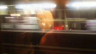 北海道・東北新幹線 はやぶさ33号の車窓①小山駅通過 2020.02.02