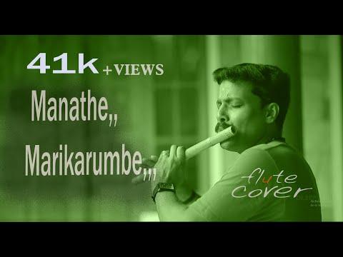 Pulimurugan/mohanlal/manathemarikrumbe/flute cover by Dileep babu.B