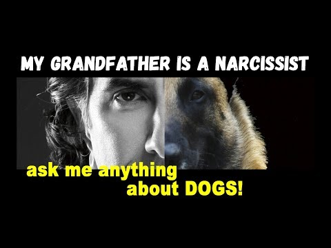 Grandfather is a Narcissist -  Dog Training Video Podcast